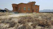 اللإيجار بيت بالقرب من جامعة تهامة محايل عسير