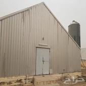مزرعة دواجن للبيع