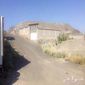 حوش في الحسينيه خلف محطة المستقبل