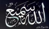 مدرس خط ولغة عربية قدير
