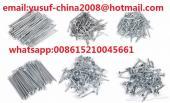 بيع و تصدير مسمار الخشب من الصين الي العالم