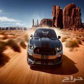 الوحش الامريكي فورد موستنج شيلبي GT 350