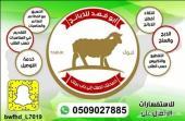 أبو فهد للذبائح تبوك خدمة الذبح والتوصيل..