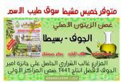زيت زيتون الجوف الاصلي متوفر خميس مشيط