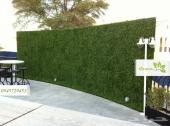 عشب جداري Green zone