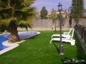 جمل حديقة منزلك بارقى انواع واشكال العشب الصن