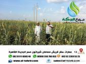 مزرعة جاهزة للزراعة لا تحتاج تسوية أو استصلاح