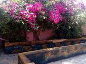 استراحة للايجار قسمين بمسبح وترفيه ملعب صابو