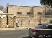 شارع فلسطين حي الشارفيه