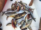 رحلات صيد بحر مفتوح