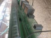 للبيع بطاريات ارانب