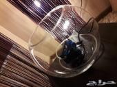 حوض سمك زجاج  مع الفلتر  ب120