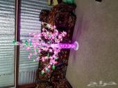 أشجار زينة مضيئة مع هدية أزهار مرشوشة