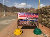 مخيم وناسة بقرية العريدة شمال الرعيلة للايجار