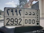 لوحة مميزة بسعر مناسب ( د د د 2992 )