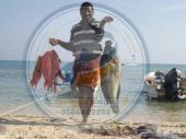 سمك طازج صيد البحر الأحمر مع التوصيل للبيت