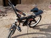 دراجا رامبو