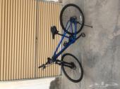 دراجة trek