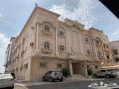 عمارة استثمارية - حي الصفا - 14 شقة