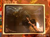 iPad pro 11 inch 256 g 4G