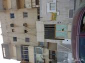 شقق حي الثغر 2 غرفه للايجار