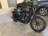 هارلي 883 سبورستر Harley iron 2019