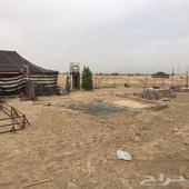 مخيم للبيع قسم واحد