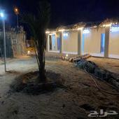 غرفتين ومطبخ للايجار العذيب محافظة العلا