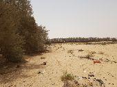 قطع زراعية للبيع ع طريق الرياض الدمام مباشرة