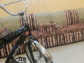 دراجه رابو
