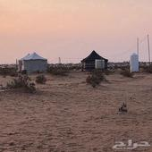 مخيمات هلا للايجار بين الغيلانه ورماح