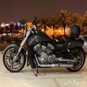 Harley V-rod muscle 2012