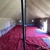 مخيم مناسب للعوائل الكبيرة جنوب غرب بريدة