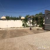 بيت دور للايجار في بلجرشي