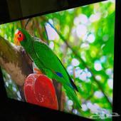 تلفزيون LG استعمال كم شهر فقط 55 بوصه 4k موديله 55un7340pvc