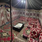 مخيم الربيع للإجار اليومي ( عرض خاص )