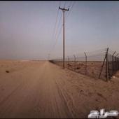 مزرعه بصك حر موقع شرق مليجه 4 ك علان (125)