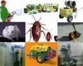 شركه مكافحه حشرات رش مبيدات تنظيف كنب مجالس