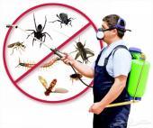 شركة مكافحة حشرات نمل ابيض صراصير دفان قبل صب