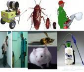 رش مبيدات مكافحه حشرات قوارض نمل صراصير فئرات