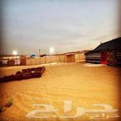 مخيم للإيجار في الثمامة الرياض