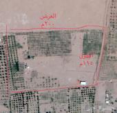 مزرعة للبيع بقرية الفارعة