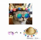 نظارة خاصة  للقطط والكلاب الصغيرة