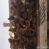 حطب للبيع منطقه القصيم