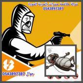 شركة مكافحة حشرات بالمدينة المنورة0543897387