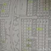 بالقيصومة للبيع بيت  و5 اراضي تجاري وسكني