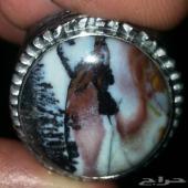 خاتم من النوادر المصوره الطبيعيه شرق اسيويه