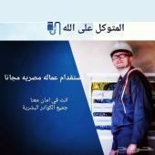 استقدام عماله مصريه مجانا