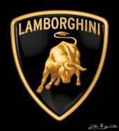 موقع الكتروني للبيع Lamborghini