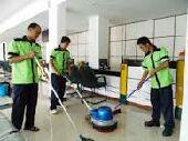 شركة تنظيف ومكافحة الحشرات وطارد الحمام وعزل